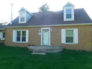 Single Family for sale in 14 Chicago Street, Alvin, IL, 61811