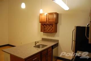 Apartment for rent in Washington Square - Washington Square Unit 115, Suffolk Borough, VA, 23434
