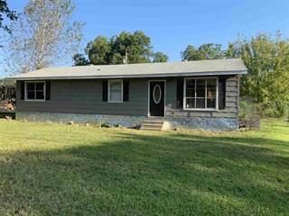Single Family for sale in 163 E Vanburen, Beckville, TX, 75631