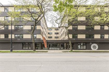 Apartment for rent in 5536 N Sheridan Rd, Chicago, IL, 60640