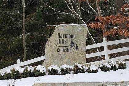 Lots And Land for sale in 800 HARMONY HILLS Parkway, Oxford, MI, 48371