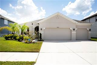 Photo of 11624 TETRAFIN DRIVE, Wimauma-Riverview, FL