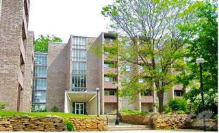 Apartment for rent in River Bluff Apartments - 1 Bedroom D, MN, 56001