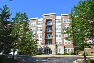 Condo for sale in 455 West Wood Street 306, Palatine, IL, 60067