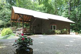 Single Family for sale in 162 High Frontier Trail, Robbinsville, NC, 28771