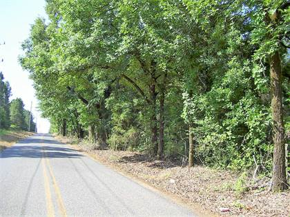 Lots And Land for sale in 171 LR 12, Foreman, AR, 71836