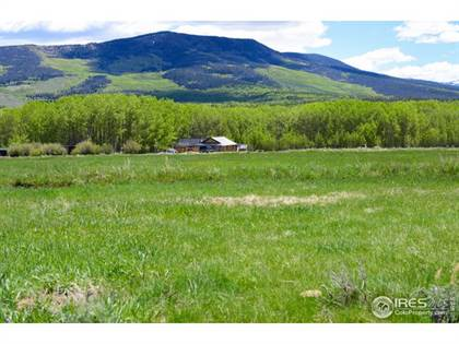 Farm And Agriculture for sale in 1510 County Road 21, Rand, CO, 80473