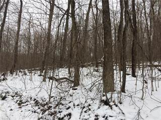 Land for sale in Tracy Rd, Uhrichsville, OH, 44683