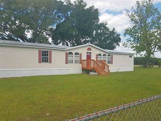 Residential Property for sale in 2857 SE Corinth Church, Lee, FL, 32059