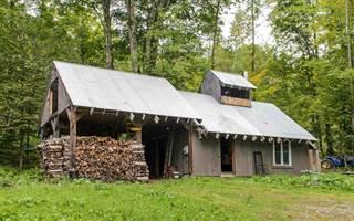 Land for sale in Warren Mountain Road, Roxbury, VT, 05669
