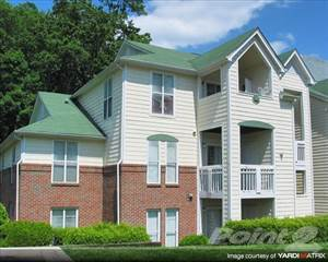 Apartment for rent in Wellington Farms - Bayberry, Charlotte, NC, 28212