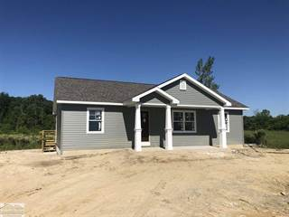 Single Family for sale in 8357 Duce Rd., Greenwood, MI, 48006