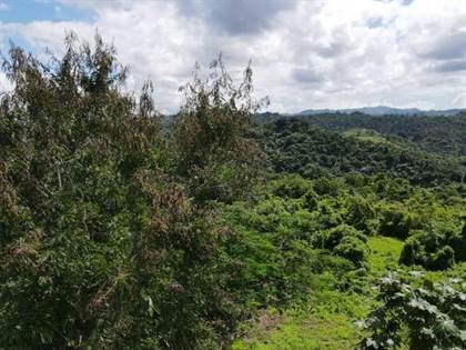 Residential Property for sale in K.M 19.4 S.R. 146, Ciales, PR, 00638