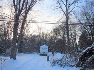 Land for sale in Vac Laird Street, Troy, MI, 48084