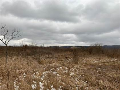 Lots And Land for sale in Lot 2 Clearfield Woodland Highway, Clearfield, PA, 16830