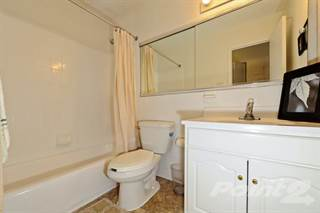 Apartment for rent in The Carlyle Apartment Homes - Three Bedroom 3 Bath, Baltimore City, MD, 21210