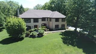 Single Family for sale in 4 Black Walnut Trail, Palos Park, IL, 60464