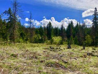 Lots And Land for sale in Tract 9 Hidden River Vista, Saint Maries, ID, 83861