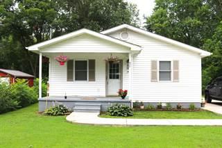 Single Family for sale in 416 Harrison Street, Carrier Mills, IL, 62917