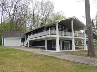 Single Family for sale in 1551 W Higgins Lake Dr, Higgins Lake, MI, 48653