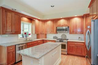 Single Family for sale in 12 Ryan Ct, Chester Township, NJ, 07930