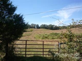 Farm And Agriculture for sale in TBD+ Old Mt. Ida Highway, Norman, AR, 71957