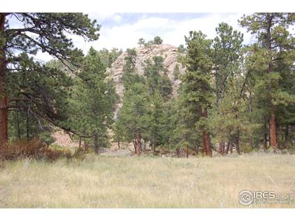 Lots And Land for sale in Green Pine Ct, Estes Park, CO, 80517