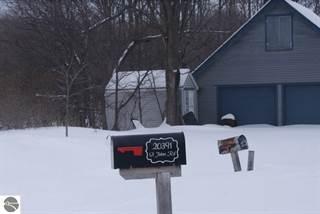 Single Family for sale in 20391 Saint Johns Road, Interlochen, MI, 49643
