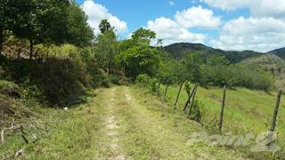 Farm And Agriculture for sale in Sector Sabana, Aibonito, PR, 00705