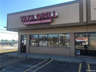 Comm/Ind for sale in 28801 Evergreen, Southfield, MI, 48076