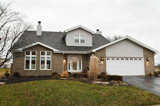 Single Family for sale in 1372 Pheasant Chase Circle, Beecher, IL, 60401