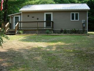 Single Family for sale in 3845 Maple Drive, Wellston, MI, 49689