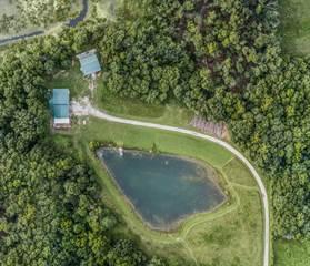 Single Family for sale in 880 Greendale Lake Drive, Xenia, IL, 62899