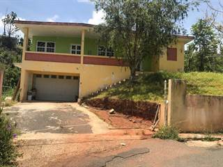 Single Family for sale in Km 6.4 173, Sumidero, PR, 00703