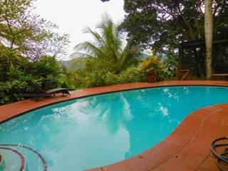 Single Family for rent in 44 CAMINO REAL, Guaynabo, PR, 00971