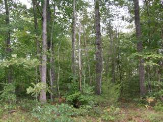 Land for rent in 4133 Chica Rd, Crossville, TN, 38572