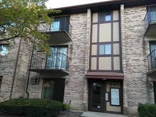 Condo for sale in 340 Klein Creek Court E, Carol Stream, IL, 60188