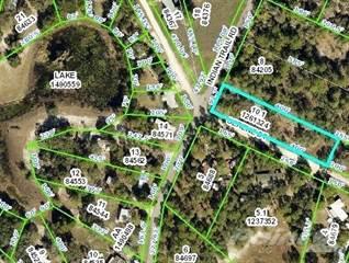 Residential Property for sale in 0 Serene Street, Weeki Wachee, FL, 34606