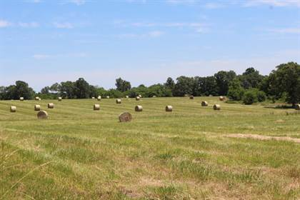 Lots And Land for sale in 000 Highway 64, Polk, MO, 65727