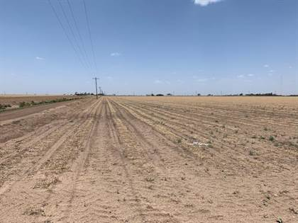 Farm And Agriculture for sale in 0 County Road 260, Floydada, TX, 79235