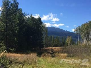 Land for sale in DL 7139/7140 Highway 5 S, Valemount, British Columbia, V0E 2Z0