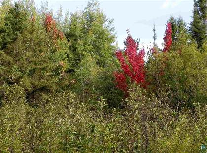 Lots And Land for sale in Tract 3 Shilhon Rd, Duluth, MN, 55804