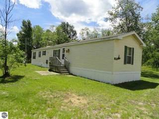Single Family for sale in 9166 Green Tree Drive, Fife Lake, MI, 49633