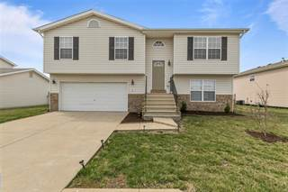 Single Family for sale in 423 Carter Drive, Dupo, IL, 62239
