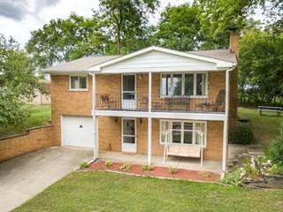 Single Family for sale in 2579 Vineyard Lane, Brooklyn, MI, 49230