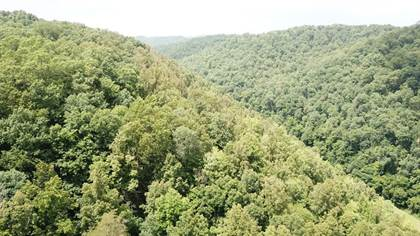 Lots And Land for sale in 12345 Leading Creek, Big Springs, WV, 26137