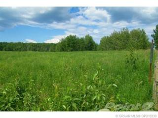 Farm And Agriculture for sale in ., Northern Lights Countyof, Alberta