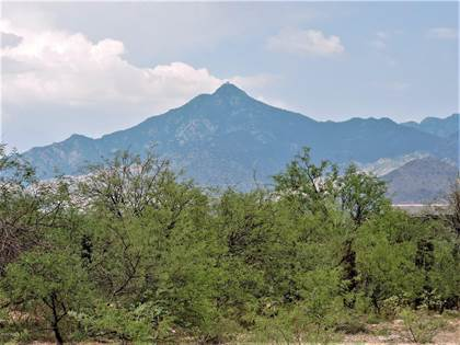 Lots And Land for sale in 392 Camino Josefina 49, Rio Rico, AZ, 85648