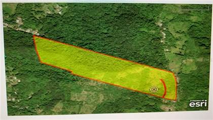 Lots And Land for sale in SR 185 KM 10.5 INTERIOR LOMAS WARD, Canovanas, PR, 00729