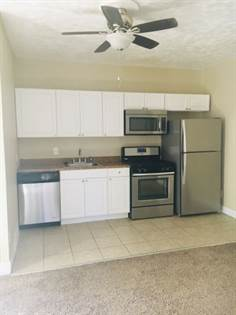 Apartment for rent in 618 N Weber St, Colorado Springs, CO, 80903